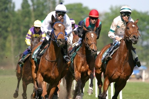 6 Horses Racing - Forecast Betting Example