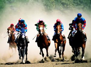 Horse Racing Dead Heat