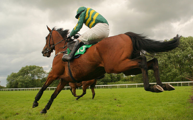 Horse and Jockey With Green and Gold Silks Jumping Fence