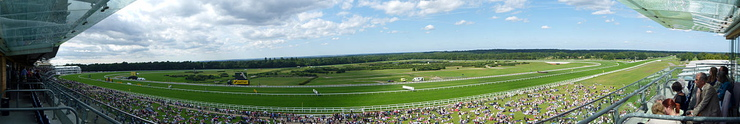 Ascot Racecourse Panorama