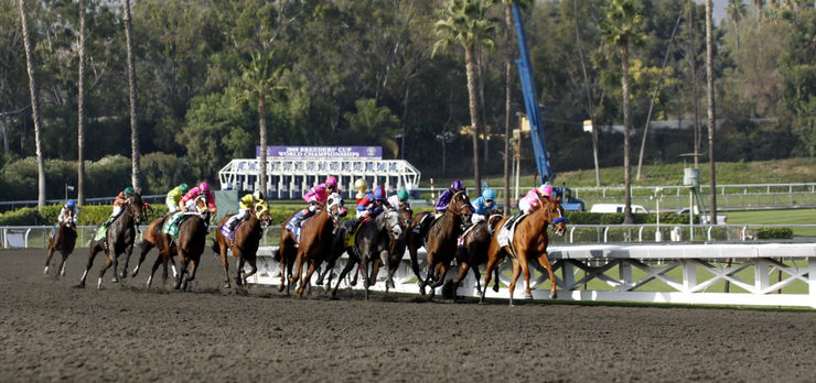 Dirt Horse race at the Breeders Cup Meeting