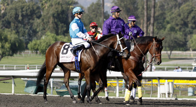 Horse on Track at Santa Anita During the Breeders' Cup