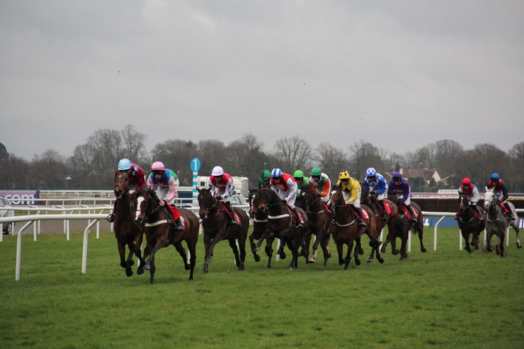 Horse Race at Kempton Park