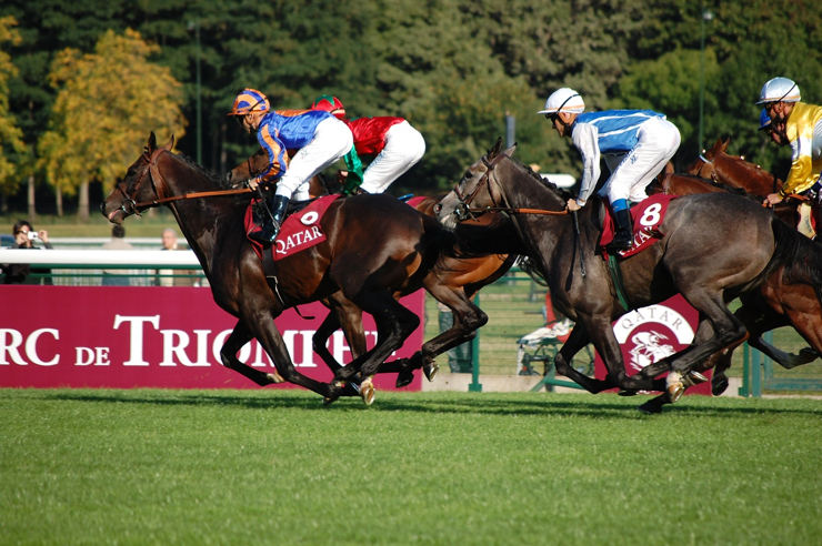 Horse Race at Longchamp Racecourse