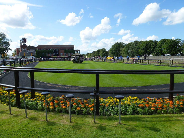 Empty Newmarket July Course Parade Ring