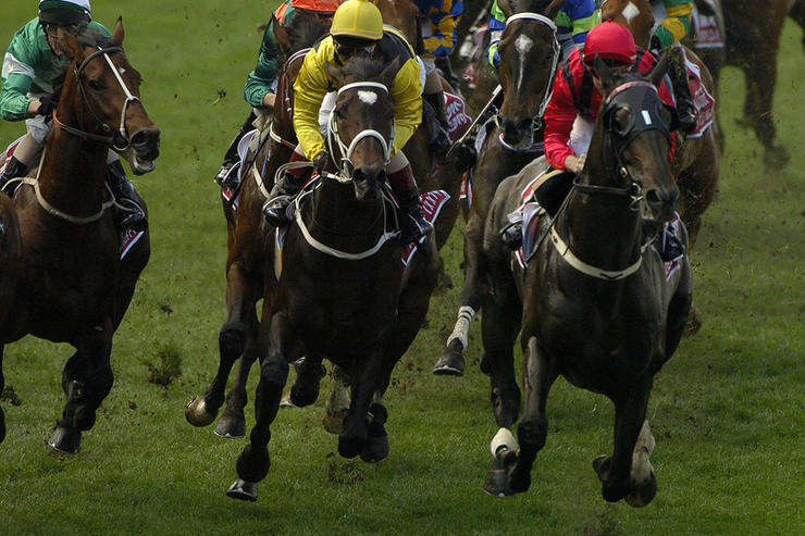 Horse Race Running Bend