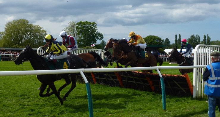 Hurdle Horse Race