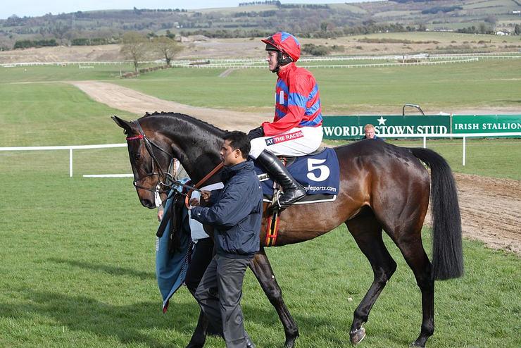 Sprinter Sacre and Jockey Barry Geraghty