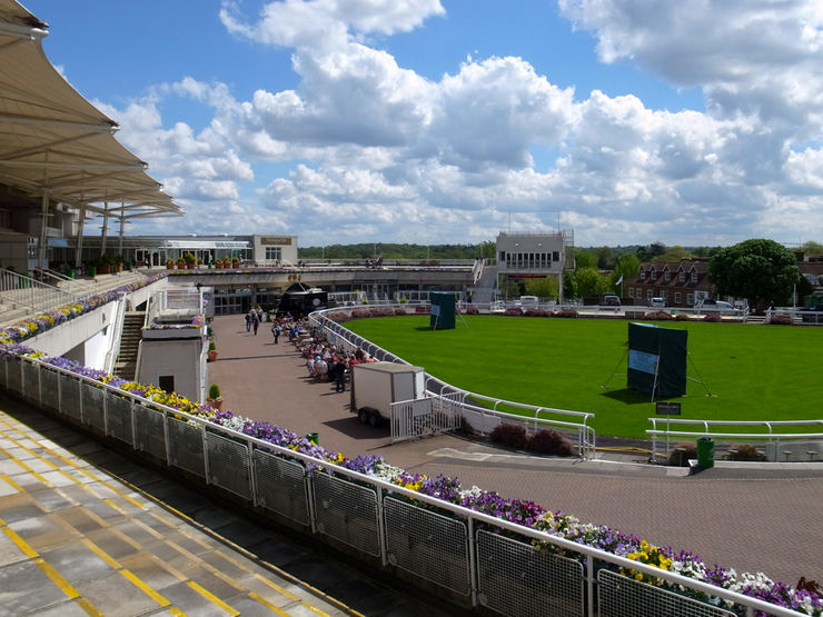 Sandown Park Parade Ring