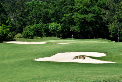 Golf Course Green and Bunkers