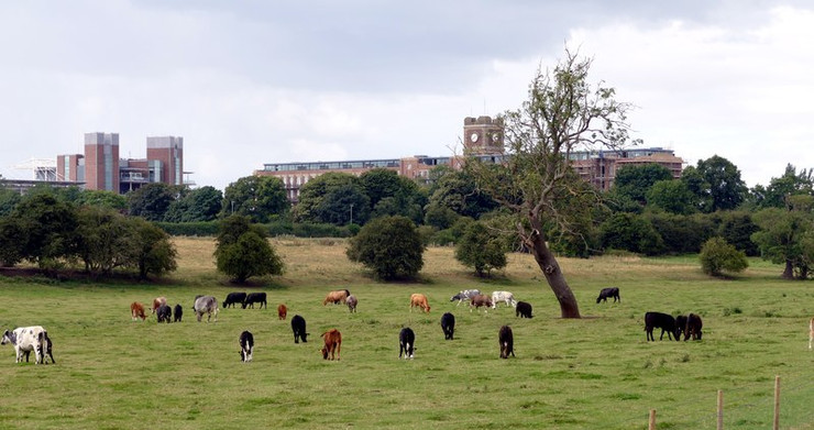York Racecourse and Terry's Chocolate Factory Viewed from Nun Ings