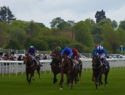 Dante Stakes Race at York