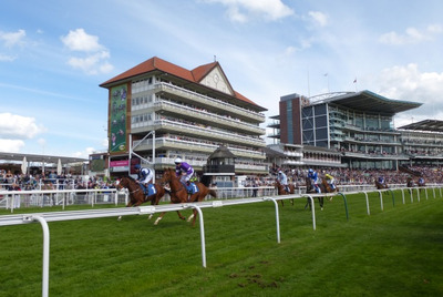 Horse Passing the Winning Line at York Racecourse