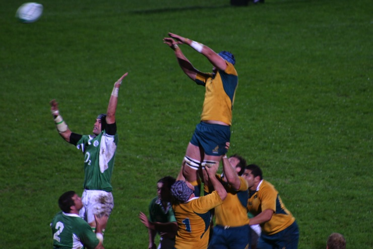 Australia national rugby union team, the Wallabies