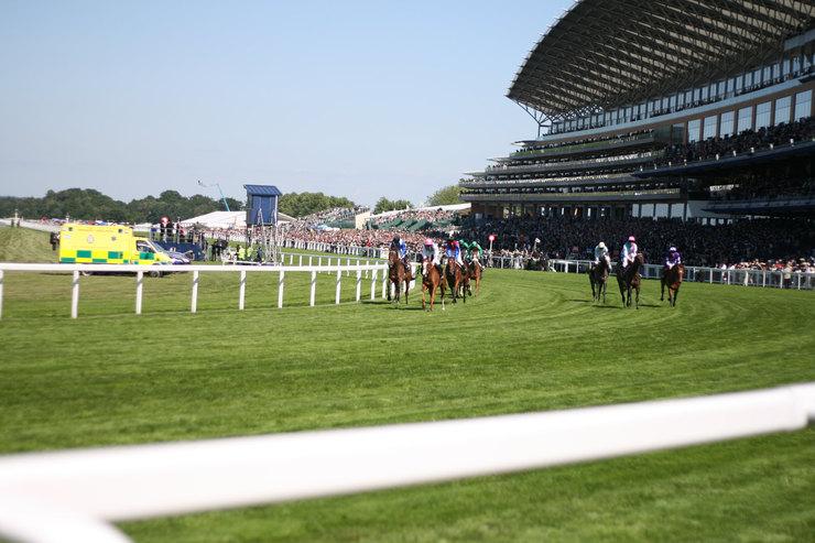 Horse Race at Ascot