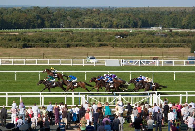 Sprint Race at Ascot Racecourse