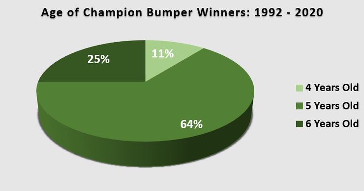 Chart Showing the Age of the Champion Hurdle Winner Between 1992 and 2020