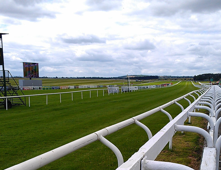 Home Straight at Curragh Racecourse