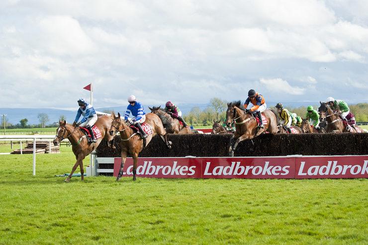 Horse Race at Fairyhouse