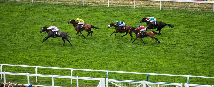 Fillies' and Mares' Race at Ascot
