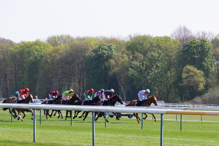 Horse Race at Haydock Park