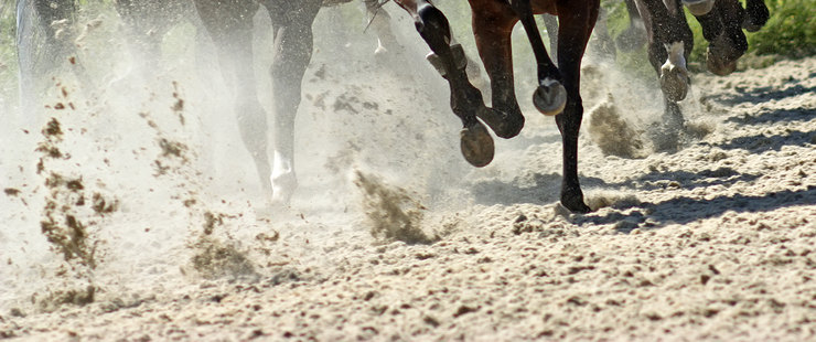 Horse Racing on Sand