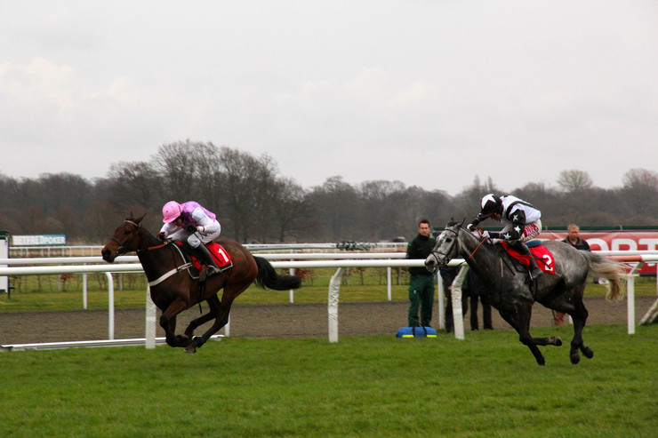 Race Finish at Kempton Racecourse