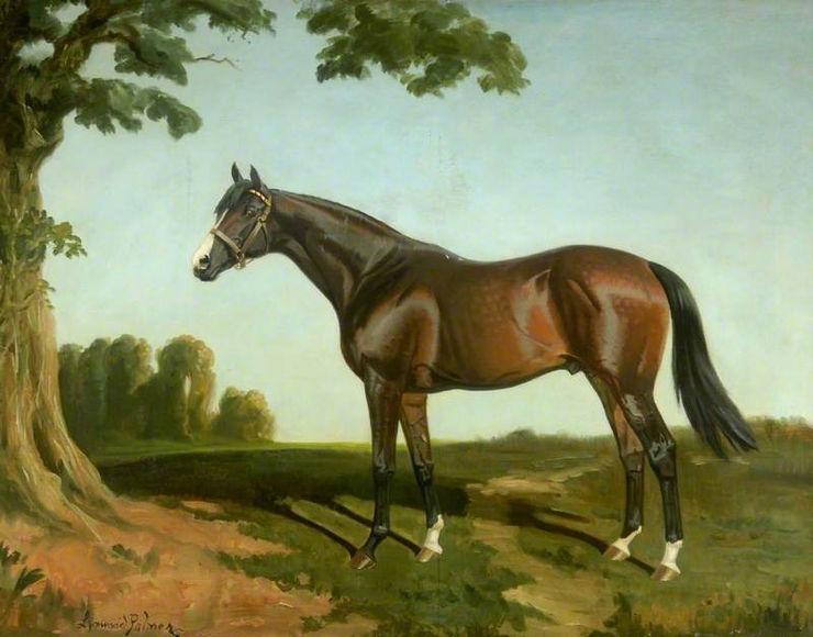 Painting of Irish & English St Leger Winner Royal Lancer