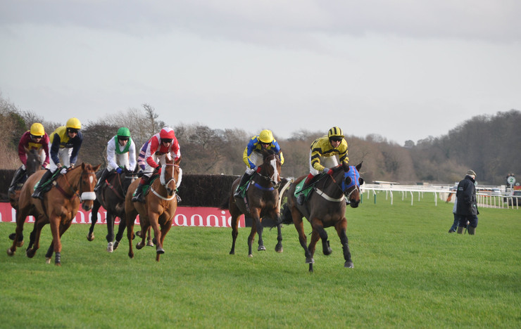 Horse Race at Uttoxeter