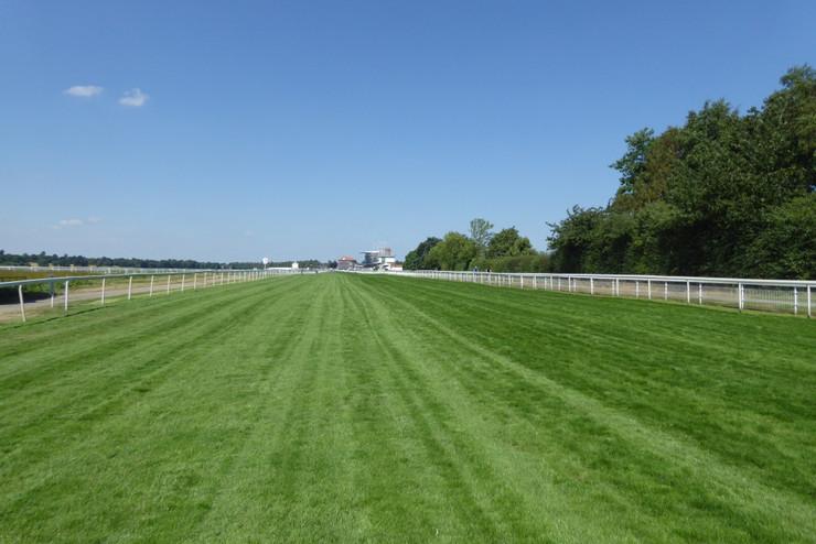 York Racecourse Finishing Straight