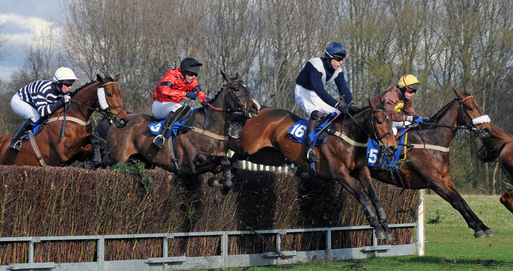 Cheshire Forest Hunt Point to Point