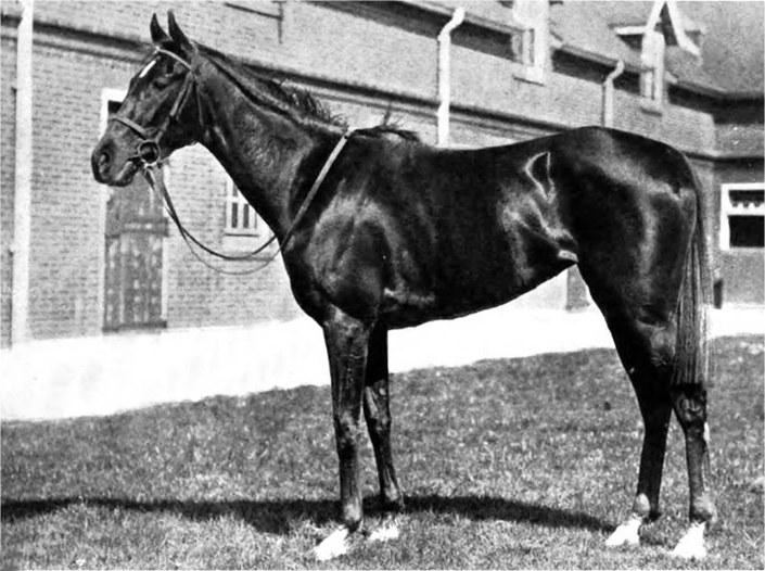 Diadem in 1917