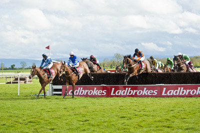 Fairyhouse Race