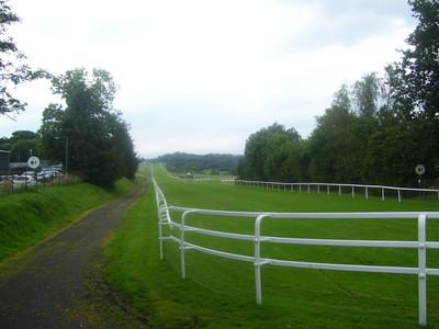 Hamilton Park 6F Start Point