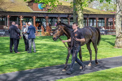 Haydock Park Parade Ring
