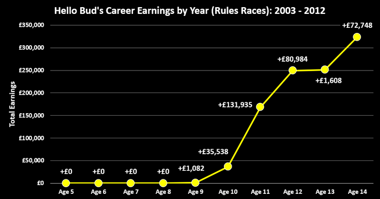 Chart Showing the Career Earnings by Year of Racehorse Hello Bud