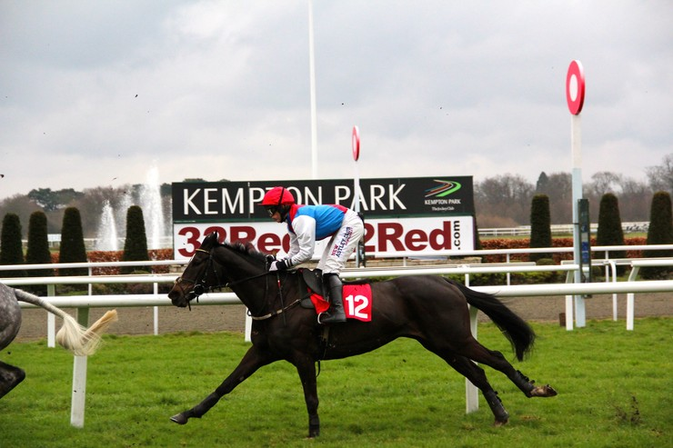 Horse Passing Kempton Winning Post