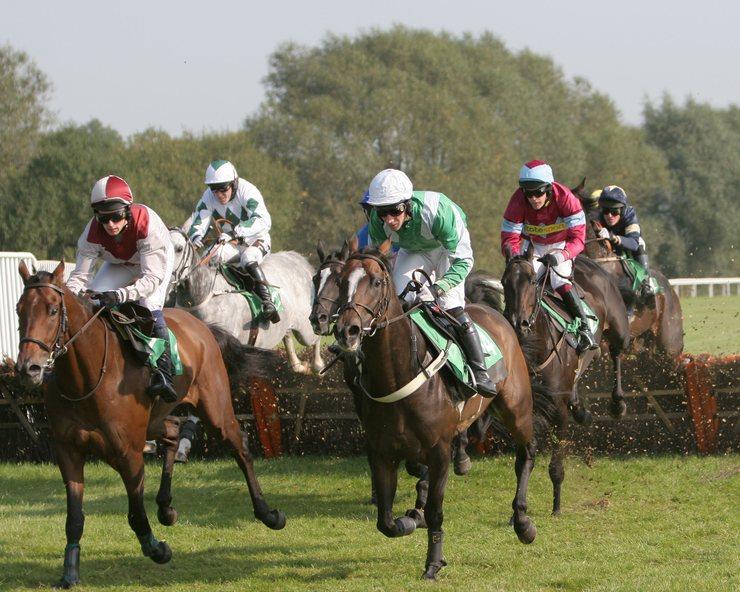 Hurdle Race Field