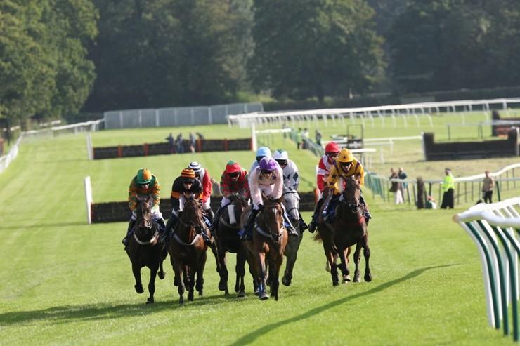 Jumps Horses Racing Towards Bend