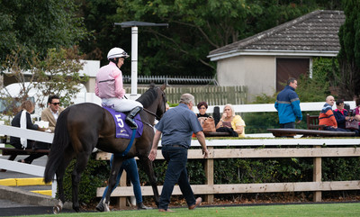 Leopardstown Horse and Jockey