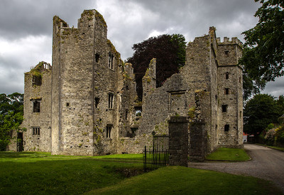 Mallow Castle, County Cork