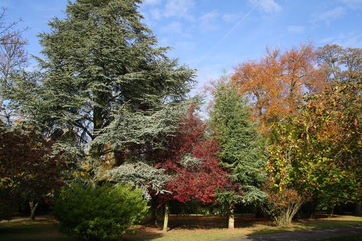 Oaks Park in Sutton, England