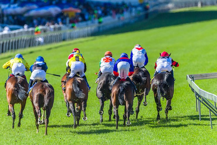 Racehorses from Behind the Field