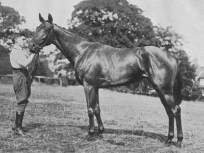 Tiffin, Winner of the 1928 Cheveley Park Stakes
