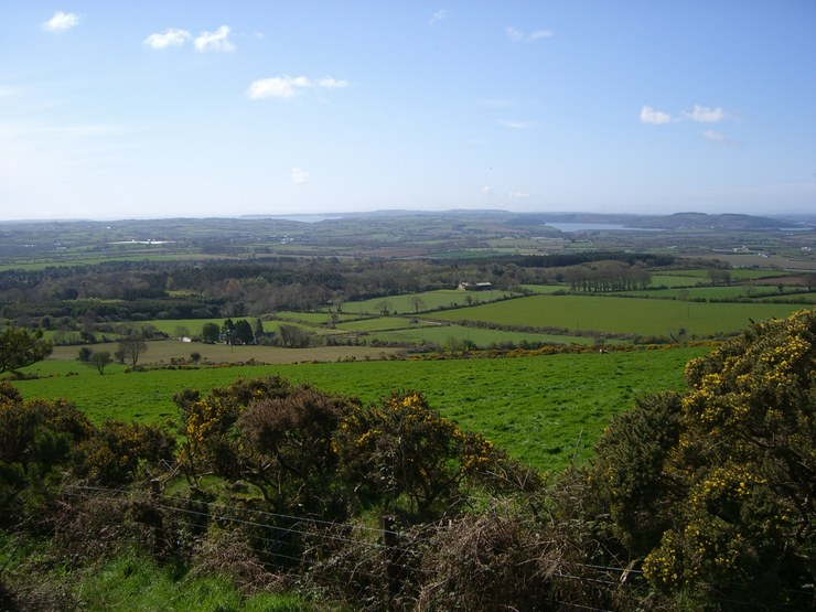 Wexford Countryside