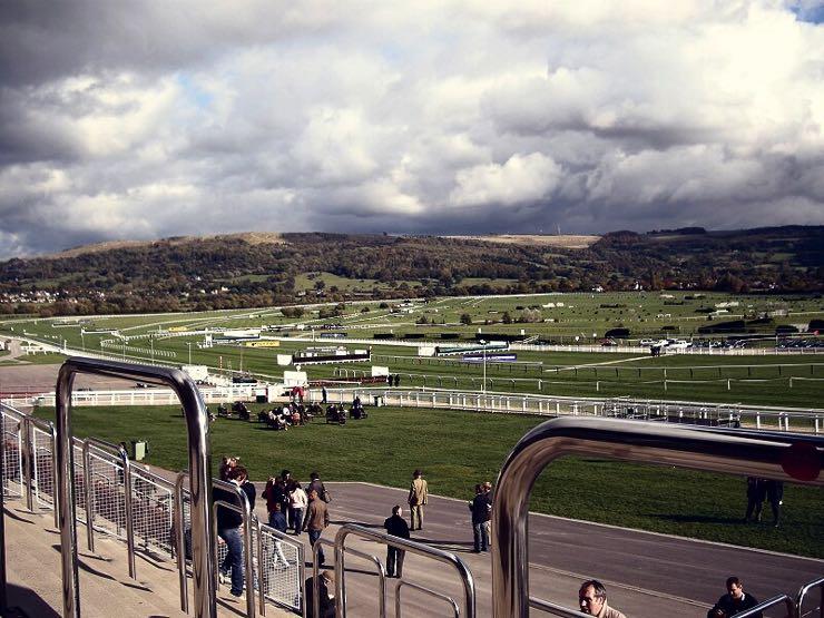 Cheltenham Racecourse cross country track