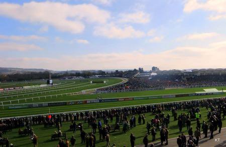 Cheltenham Racecourse crowds