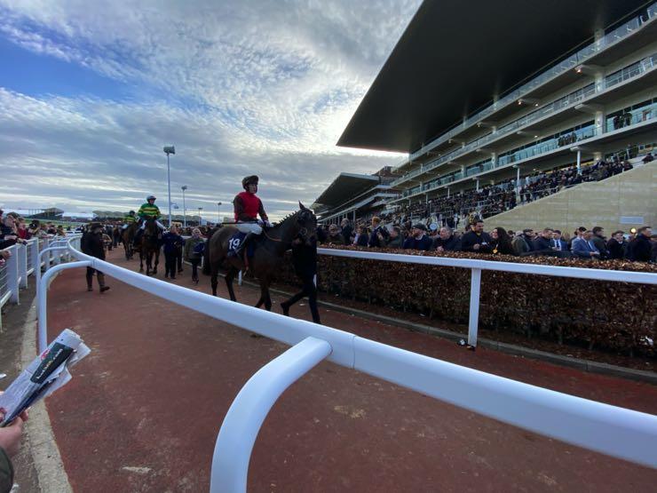 Cheltenham jockeys