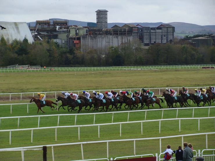 Cork Racecourse, flat racing