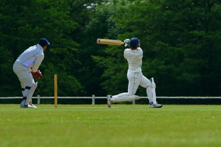 Cricket batter